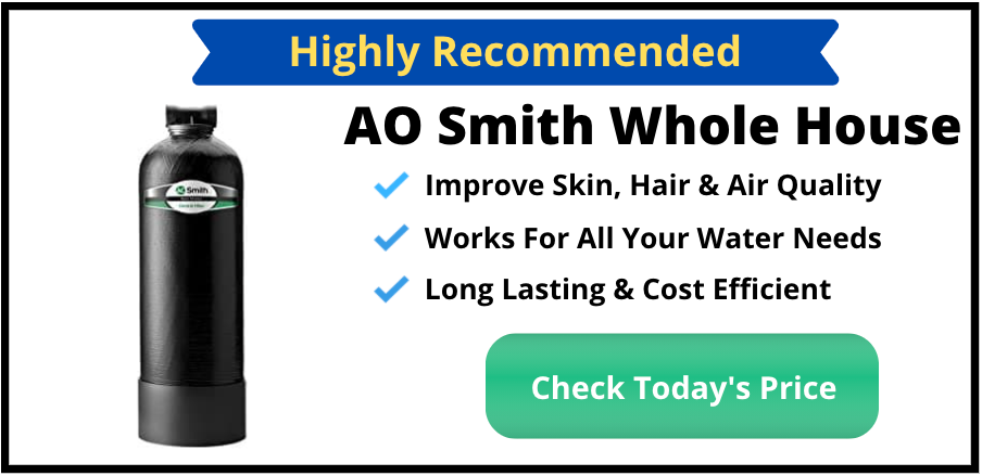 AO Smith Whole House Water Filter